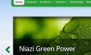 Niazi Green Power